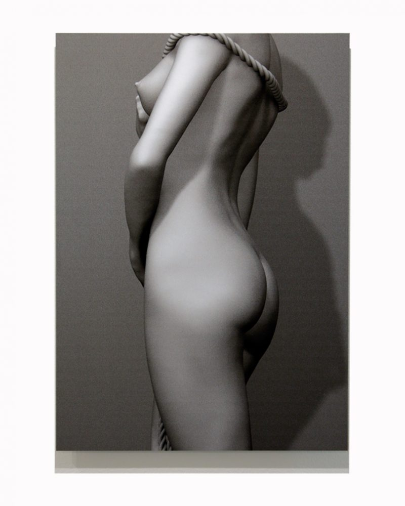 Laura Torso 35 x 50 cm